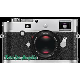 Leica M-P  SILVER 10772