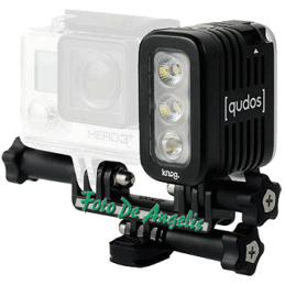 QUDOS  Action Video Light...