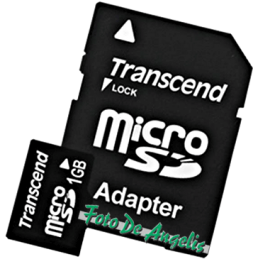 Transcend MicroSD 1 Gb