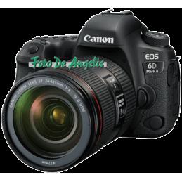 Canon Eos 6D MkII + 24-105...