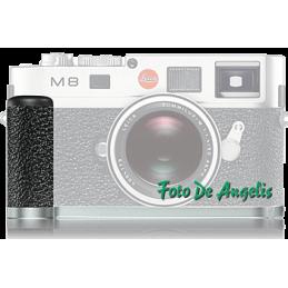 Leica 14487 impugnatura...