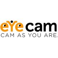 Eyecam telecamere